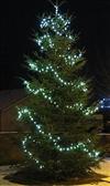 Terndrup juletræ